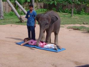 Recibiendo masajes de un elefante en Tailandia