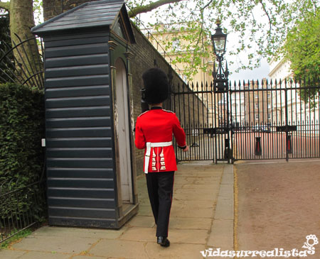 Buckingham Palace vidasurrealista 3