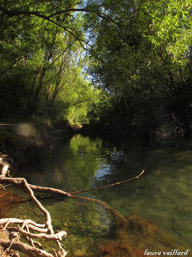 Brazo del río Azul a tan sólo 50 metros del hostel