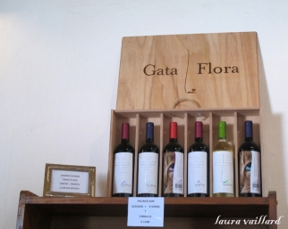 Gata Flora, vino dulce de Vasija Secreta a degustar